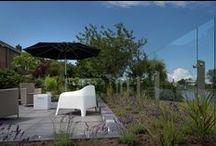 Glazen windschermen / Glazen windschermen bieden luwte in uw tuin. Dat wordt al vroeg in het jaar genieten van de eerste zonnestralen!