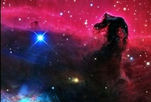 Star Light, Star Bright / by Megan Joel Peterson