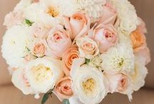 Bride's Bouquets / The possibilities are endless. What can't your mind come up with in the realm of flowers.........Classic floral ideas or new trends for 2014/15?
