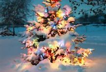 N O E L / The most wonderful season of all!