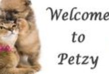 Delight Your Pets / PETZY Collection For Adorable Pets