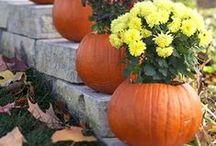 autumn / by Samantha Emily