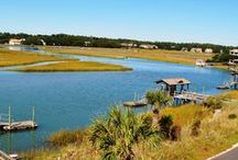 Our Area / The Litchfield Beaches in Pawleys Island, South Carolina