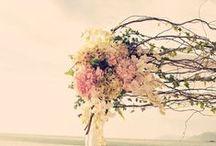 Wedding! / by Samantha Tuohimaa