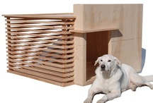 Pets / chicken coops, pet beds, dog houses, goat playgrounds, Four Legged Family Members   / by I'vana