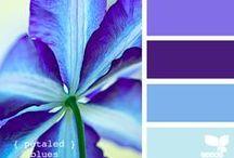 Color me happy / by Kelly O'Sullivan