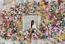 Floral Love / Flowers, flowers, flowers