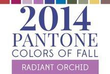 Trend colors 2014 / Een blik op de kleuren van 2014