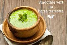 Alimentation naturelle l Natural Food / Recettes et trucs pour déguster les plantes sauvages du Québec