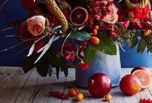 Flores / Flowers / 花。主に飾る。 / Diseños de las plantas