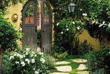 garden / zahrada na chalupě, kytičky doma na zahrádce, v oknech..bylinky