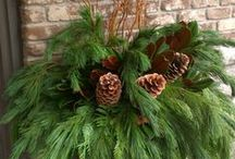 Holiday: Nature Inspired / Used tidbits from your landscape to put the finishing touches on holiday centerpieces and arrangements.