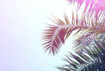 Summer Vacay in California