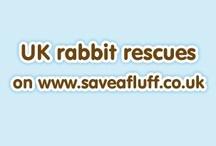 UK Rabbit Rescues / UK rabbit sanctuaries listed on our website  - adopt a rabbit  www.saveafluff.co.uk