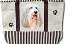 Bearded Collie / bearded collie