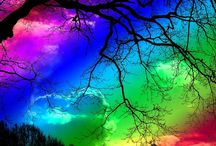 Natural Rainbows !!! /  Somewhere over the Rainbow skies are blue and the dreams your dare to dream really do come true.  ADD HERE ONLY NATURAL RAINBOWS PLEASE !  We have another Board for Multicolored Things.  Enjoy and thank you you for sharing