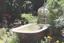 Hus och trädgård / Blommor, växthus, drivbänkar, redskap, utebelysning
