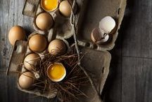 Eggs and Nests
