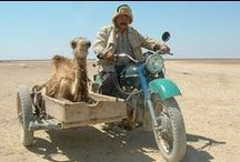 transportation around the world / by Deborah Gorton