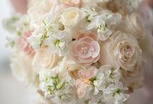 Fancy Wedding. / ideas for a possible wedding