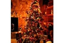 Christmas Scents~Holiday Fragrance / Welcome to Kayloma Candles Christmas Scents!