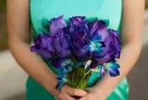 The Colors / Teal/Aqua/Mint & Purple/Plum Wedding