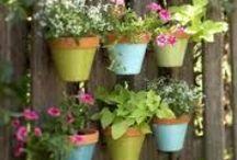 My small garden - ideas / Ideas for our 'project' garden.