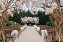 Ceremony / Beautiful ceremony set ups.