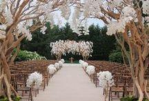 Ceremony / Beautiful ceremony set ups.
