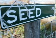 Food and Seed on the Organic Farm / by Sustainable Seed Co.