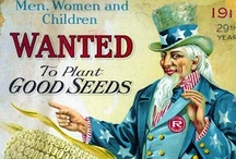 Heirloom Seed Catalogs / by Sustainable Seed Co.