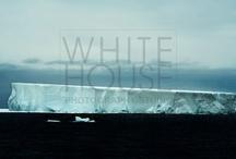 SOUTH POLE / Monia Tartarini photography www.monia.it WILDLIFE for WHITE HOSE PHOTOGRAPHY STUDIO