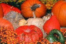Seasonal projects: Fall