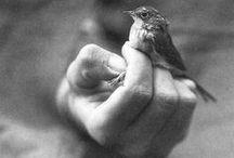 Feelings,tenderness, caress....