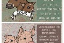 Veganpropaganda