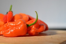 My Chilli Pic's