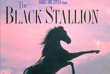 Horse Books and Movies / Horse books & equine-themed movies