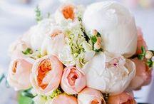 || Floral Inspiration ||