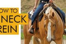 Horse Training Tips / Training advice from the pros in English and Western disciplines.