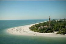 Florida, where winter is summer / Florida, Where Winter is Summer / by Diane Parry