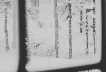::winter::