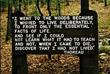 My Sentiments Exactly / I'm a lover of nature. I would just be happy to go live in the woods and commune with God. I'm really such a hippy- minus the drugs, free love, and non sense!  Also, thanks Humanities for exposing me to transcendentalism, the main inspiration for this board.    / by Sarah Fogg