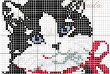 cat (γατες)