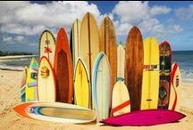 SURFBOARDS / by SD Surfboards