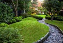 Garden & Landscape / by Stephanus Mardianto