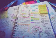 Study motivation/tips