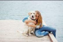 Articles / Pet Friendly Travel Articles.