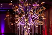 Event Uplighting & Decor Inspiration / Here are some examples and inspiration of things that you can do with something as simple as placing a light on the ground.
