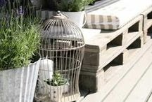 - My garden ideas -