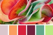 Color Inspiration / Add a ton of personality into your home with these inspiring color ideas!